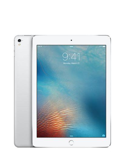 Apple iPadPro9.7inchWiFi256GB